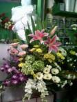Bunga Rangkaian (BR1)